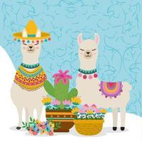 cute cartoon llamas vector