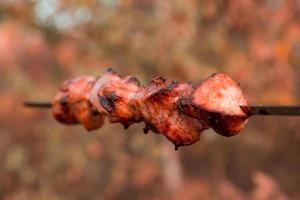 Shish kebab en brochetas sobre fondo de naturaleza borrosa foto