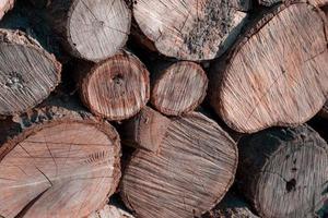 fondo de decoración de madera natural foto