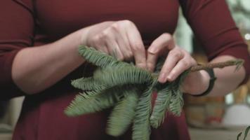 trabalhando com parte de um pinheiro video