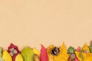 Fondo de hojas de otoño colorido foto