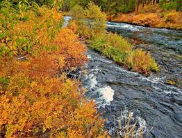 Autumn At the Metolius River north of Camp Sherman OR photo
