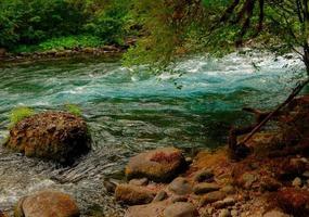 Emerald Stream the McKenzie River Cascade Range near Clear Lake OR photo