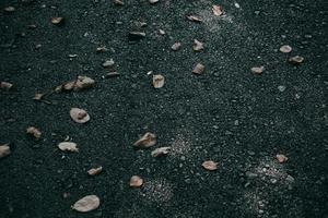 The dry leaf on asphalt road texture photo