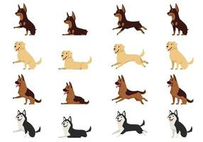 Set of dogs in different poses vector