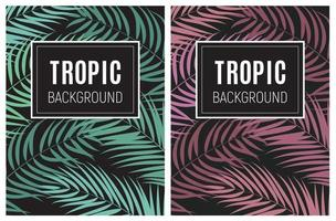 Beautifil Palm Tree Leaf Tropical Silhouette Background Vector Illustration