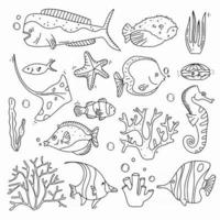 Sea life doodle set  Fisches and corals collection hand drown Underwater elements in cute style vector