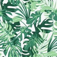 seamless tropical palm leafs pattern illustration vector