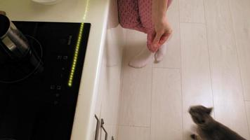 A woman feeds a cat in the kitchen video