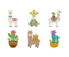 cute llama collection vector