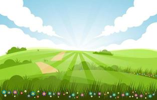 Green Field Summer Scenery Background vector