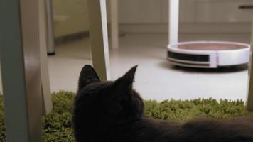 Robot vacuum cleaner collects trash in the kitchen Modern technology video