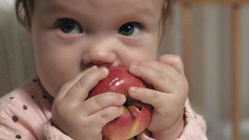 Little girl eating an apple, close-up video
