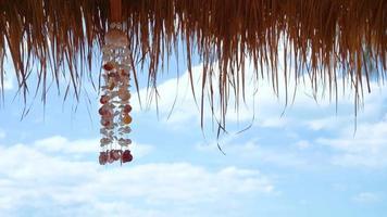 décoration coquille balancée par le vent video