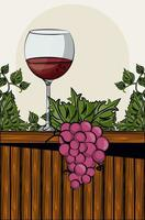 wine cup drink with grapes fruits vector