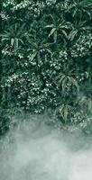 jardín vertical con hojas verdes tropicales con niebla y lluvia foto