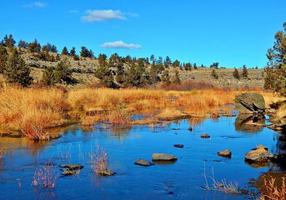 Riparian Gold an autumn view along the Deschutes River at Cline Falls State Park near Redmond OR photo