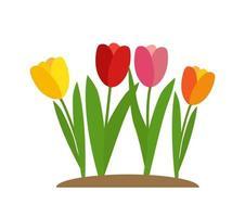 Spring Tulip Flowers Background Vector Illustration
