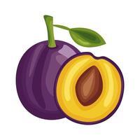 ciruela fresca deliciosa fruta icono de estilo detallado vector