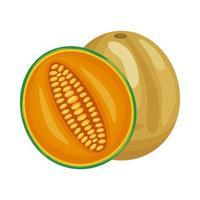 icono de estilo detallado de fruta deliciosa fresca melón vector
