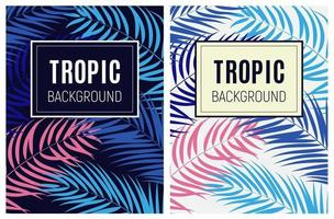 Beautiful Palm Tree Leaves Tropical Silhouette Background Vector Illustration
