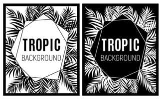 Beautiful Palm Tree Leaves Tropical Silhouette Background vector