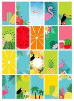 Collection set of social media stories design templates, summer backgrounds vector