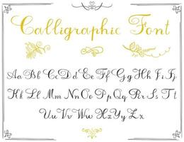 Alphabet letters, hand drawn calligraphy font. Vector alphabet. Hand written letters of the alphabet and decoration elements isolated on white background