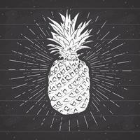 Vintage label, Hand drawn pineapple, grunge textured retro badge template, typography design vector illustration on chalkboard background