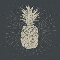 Vintage label, Hand drawn pineapple, grunge textured retro badge template, typography design vector illustration