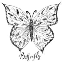 Ornamental hand drawn sketch of Butterfly abstract. vector illustration with ornament, isolated