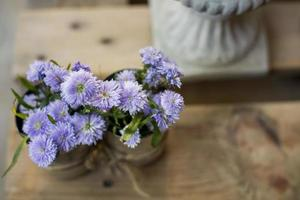 Flower in coffee shop photo