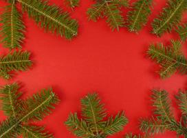 Christmas flat lay with fir tree branches frame on a red background and copy space inside Stock photo