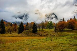 follaje y montañas cuatro foto