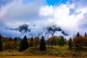 follaje y montañas cinco foto