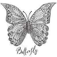 Ornamental hand drawn sketch of Butterfly vector
