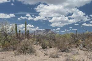 Mountains under a cloudy and blue sky in the desert of Baja California Sur Mexico photo