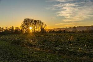 puesta de sol en los arboles foto