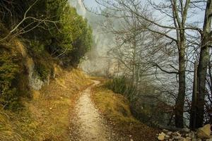 alpine trail in the clouds one photo