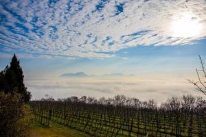 viñedos y nubes entre las colinas euganeas foto