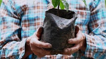 um fazendeiro idoso segurando mudas em um saco plástico preto para plantar árvores no jardim video