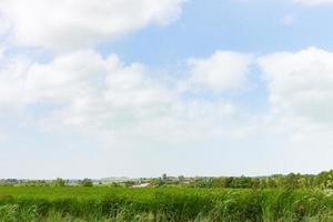 gran cielo de verano foto