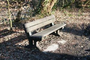 wooden bench in the sun photo