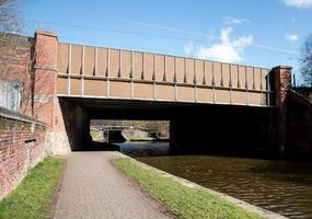 Large Brown Bridge photo
