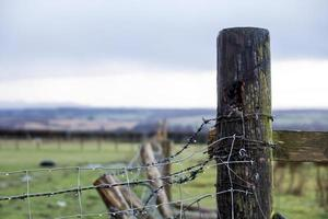 Fence Post in the Rain photo