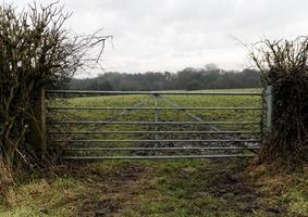 A Farm Gate photo