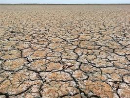 suelo seco y árido foto