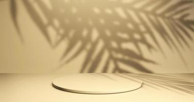 Minimalistic showcase with empty space photo