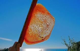 Bee hive with backlight photo