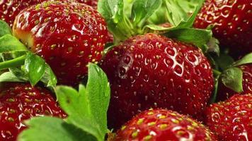 Close up tas de dolly shot de fraise rouge fraîche video